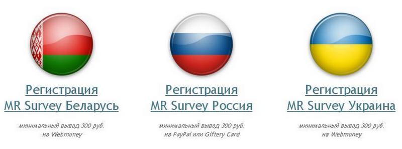 mr-survey